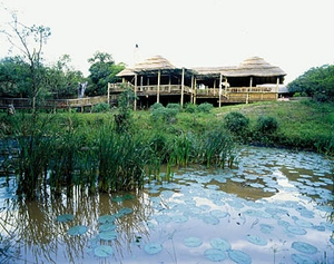 Zululand Tree & Safari lodges **** - u Hluhluwe - JAR